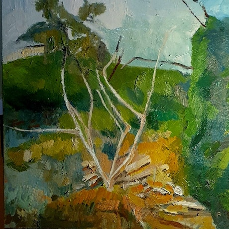 (CreativeWork) Black Hill Conservation Park  by Timothy Dell. Oil Paint. Shop online at Bluethumb.