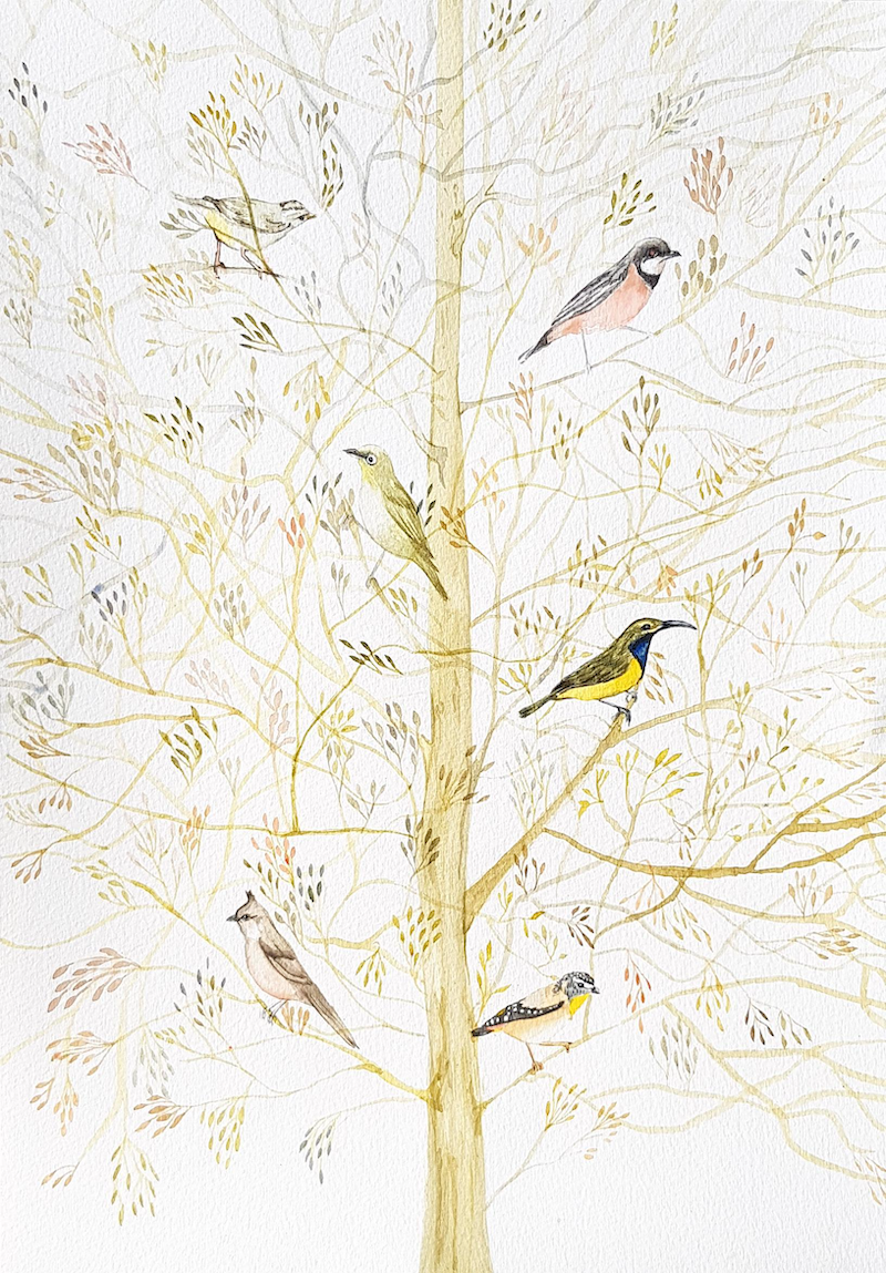 (CreativeWork) Autumn Branches by Nicola Cowie. Watercolour Paint. Shop online at Bluethumb.