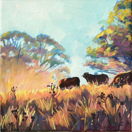 (CreativeWork) Golden Winter Morning, Weabonga NSW by Leslye Cole. Oil Paint. Shop online at Bluethumb.