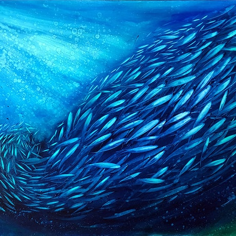 (CreativeWork) Just Keep Swimming 21 by David Clare. Oil Paint. Shop online at Bluethumb.