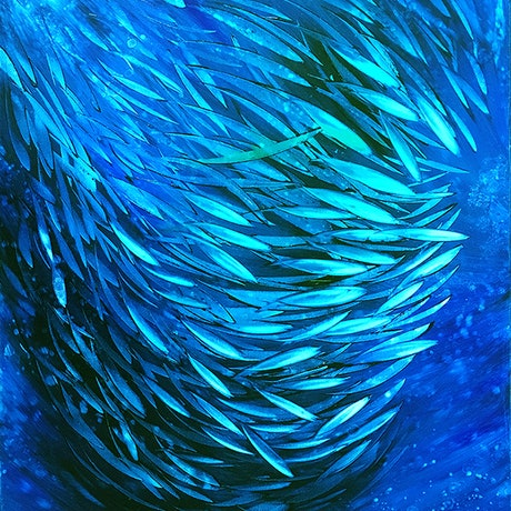 (CreativeWork) Just Keep Swimming 15 by David Clare. Oil Paint. Shop online at Bluethumb.