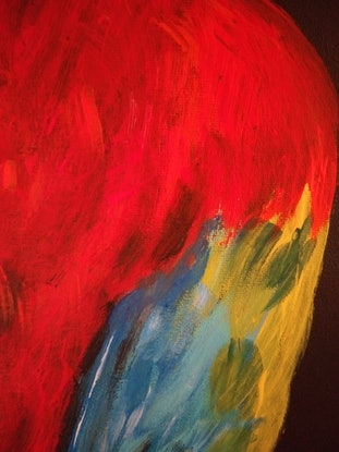 (CreativeWork) Scarlet Macaw - Colorful Parrot  by Ilanit Vanu. Acrylic Paint. Shop online at Bluethumb.