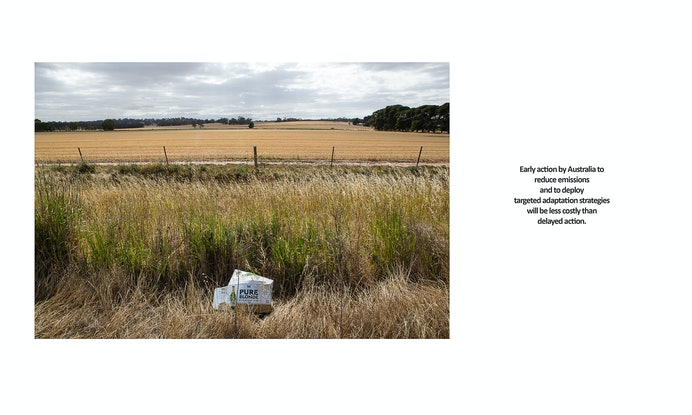(CreativeWork) State of the Environment (Pure Blonde) Ed. 2 of 12 by Selina Wallace. Photograph. Shop online at Bluethumb.