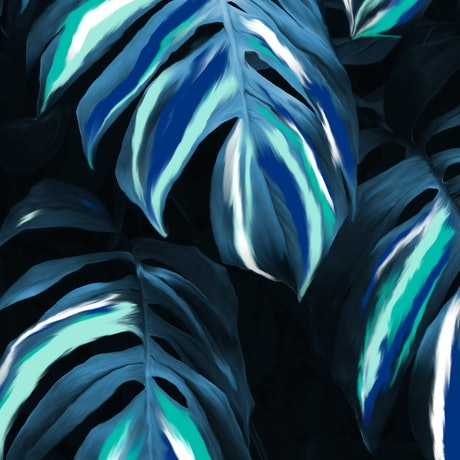 (CreativeWork) Monstera Leaves at Night by Ilanit Pocock (Vanu). Print. Shop online at Bluethumb.