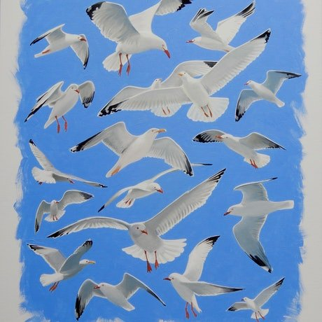 (CreativeWork) Seagulls by Lance Ross. Oil Paint. Shop online at Bluethumb.