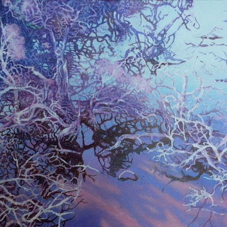 (CreativeWork) Wetlands by Chandy Pendergrast. Oil Paint. Shop online at Bluethumb.