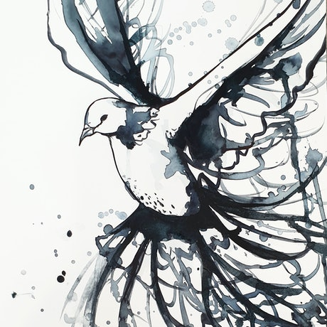 (CreativeWork) In Flight  (Minimalist Bird, Watercolour on Paper with Matte Board Mount)  by Leni Kae. Watercolour Paint. Shop online at Bluethumb.