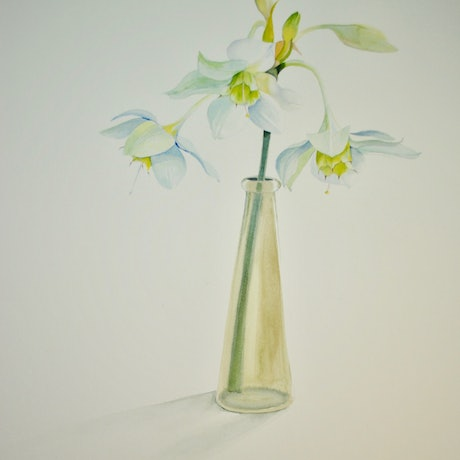 (CreativeWork) White on White by Carol Croad. Watercolour Paint. Shop online at Bluethumb.