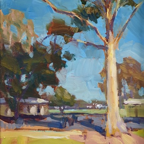 (CreativeWork) Afternoon light on gumtrees by Minhan Cho. Oil Paint. Shop online at Bluethumb.