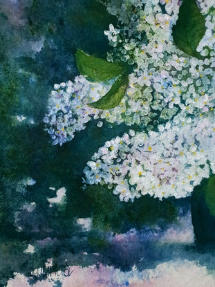 (CreativeWork) Lilacs In the Light by Lucinda Leveille. Watercolour Paint. Shop online at Bluethumb.