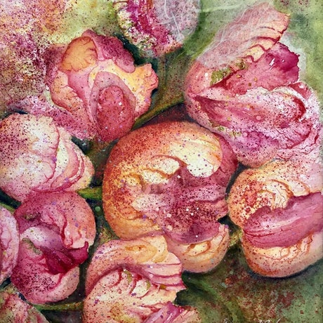 (CreativeWork) PinkTulips by Donna Maloney. Watercolour Paint. Shop online at Bluethumb.