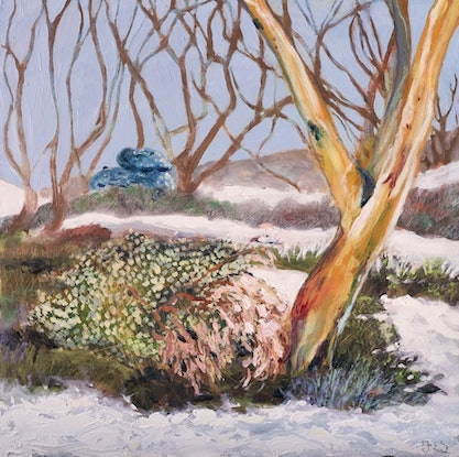 (CreativeWork) Isolation, alone but not lonely, Kosciuszko by Fiona Smith. Oil. Shop online at Bluethumb.