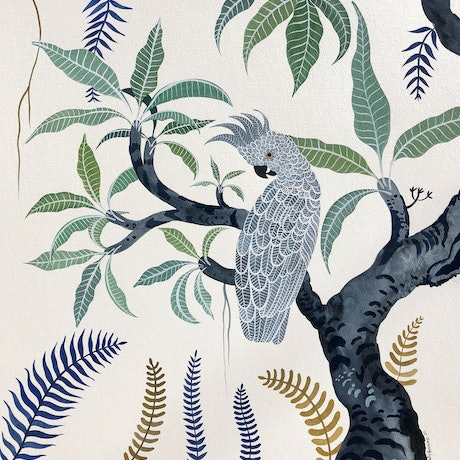 (CreativeWork) Grey Cockatoo Frangipani by Sally Browne. Watercolour Paint. Shop online at Bluethumb.