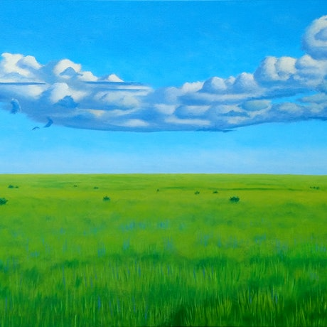(CreativeWork) The Steppe by Geoff Harrison. Oil Paint. Shop online at Bluethumb.
