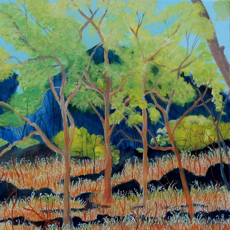(CreativeWork) Kakadu Country - Finalist, The Great Australia Competition by Doodie Herman. Acrylic Paint. Shop online at Bluethumb.