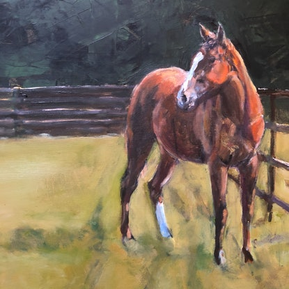 (CreativeWork) The Yearling by Bronwen Hunt. Oil Paint. Shop online at Bluethumb.