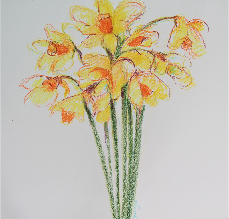 (CreativeWork) Daffodils by Heidi Savage. Other Media. Shop online at Bluethumb.