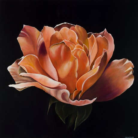(CreativeWork) TANGERINE ROSE by MERON SOMERS. Acrylic Paint. Shop online at Bluethumb.