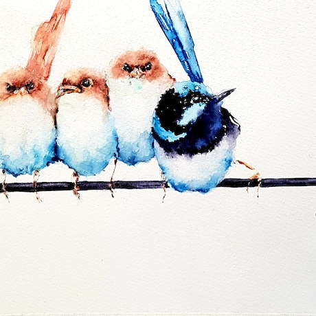 (CreativeWork) Fairy Wren  by Christine Manby. Watercolour Paint. Shop online at Bluethumb.
