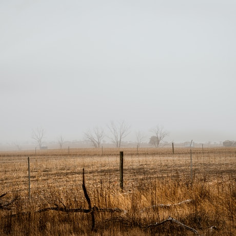 (CreativeWork) Light and mist Ed. 1 of 5 by Wendy Philip. Photograph. Shop online at Bluethumb.