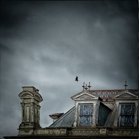 (CreativeWork) CROW HOTEL Ed. 1 of 25 by Carmel Cook. Photograph. Shop online at Bluethumb.