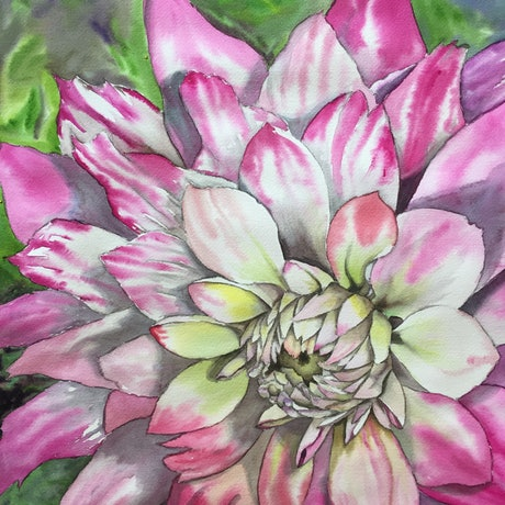 (CreativeWork) Dalia By Kathy by Kathy Edwards. Watercolour Paint. Shop online at Bluethumb.