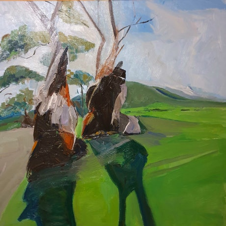 (CreativeWork) Medusa Trees at Burra Gorge S.A  by Timothy Dell. Oil Paint. Shop online at Bluethumb.