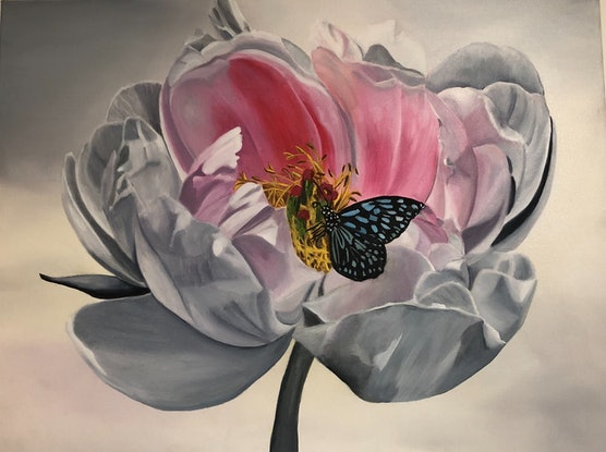 (CreativeWork) Peony and the butterfly  by Bernadette McConville. Oil Paint. Shop online at Bluethumb.