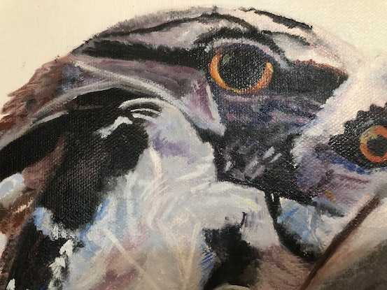 (CreativeWork) Tawny Frog-Mouth Owl and her chick    by Bernadette McConville. Oil Paint. Shop online at Bluethumb.