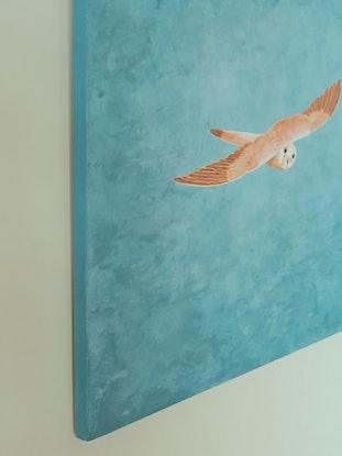 (CreativeWork) Tawny Owl In Flight by Barry Johnson. Acrylic Paint. Shop online at Bluethumb.