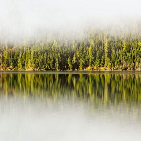 (CreativeWork) Lake Revelstoke Ed. 1 of 20 by Penny Prangnell. Photograph. Shop online at Bluethumb.