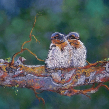 (CreativeWork) Perched Pair by Helen Miles. Other Media. Shop online at Bluethumb.