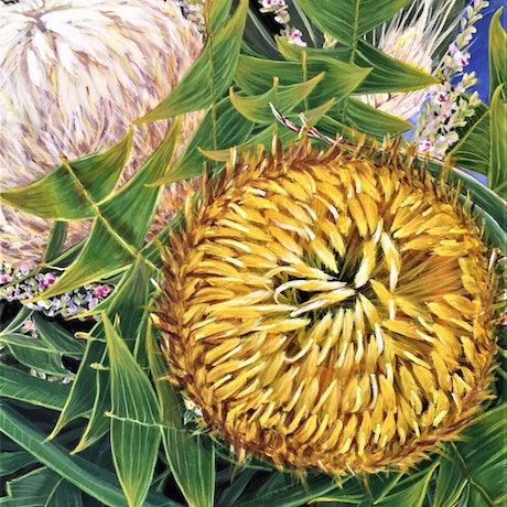 (CreativeWork) Come A Little Bit Closer - Banksia baxteri by HSIN LIN. Acrylic Paint. Shop online at Bluethumb.
