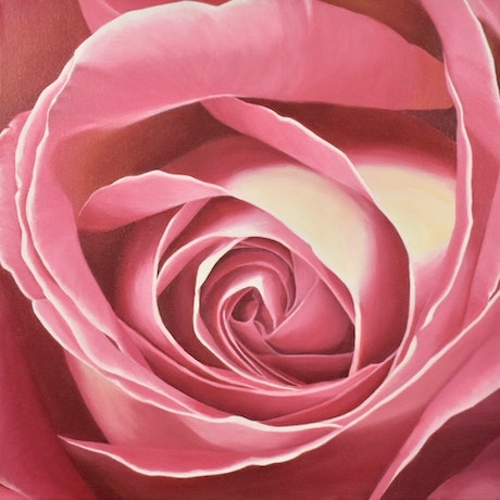 (CreativeWork) Heart of the Rose - Grace by Patricia Hillard. Acrylic Paint. Shop online at Bluethumb.