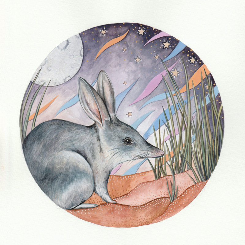 (CreativeWork) The Greater Bilby  by Ingrid Bartkowiak. Watercolour Paint. Shop online at Bluethumb.