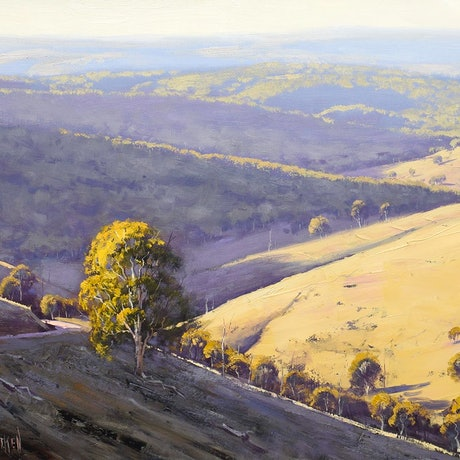 (CreativeWork) Afternoon light Turon Hills, nsw by Graham Gercken. Oil Paint. Shop online at Bluethumb.