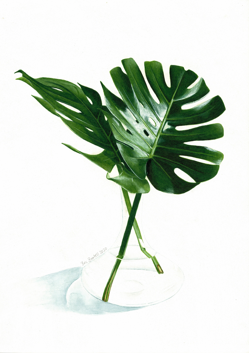 (CreativeWork) Swiss Cheese Leaves by Bec Bartell. Mixed Media. Shop online at Bluethumb.