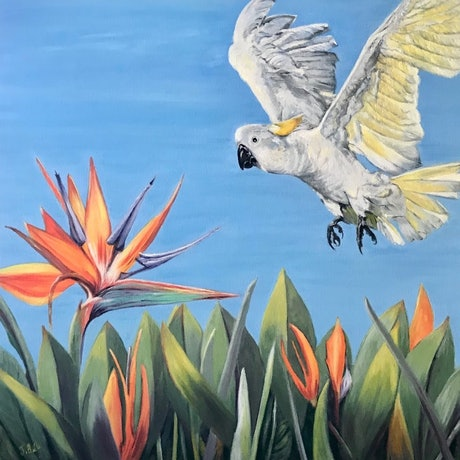 (CreativeWork) Bird of Paradise by Jenine Bell. Oil Paint. Shop online at Bluethumb.