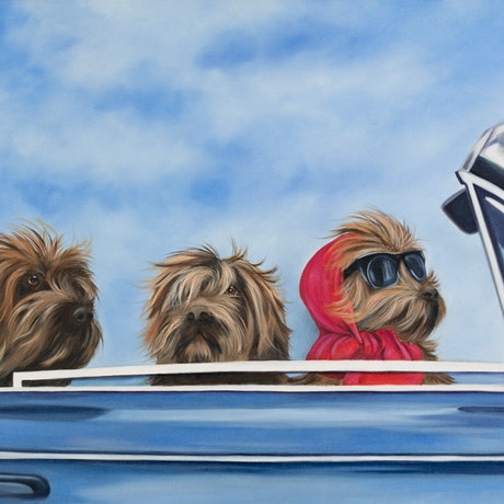 (CreativeWork) Limited Edition Stretched print - Road Trippin - Dogs in car Ed. 1 of 150 by Mia Laing. Print. Shop online at Bluethumb.