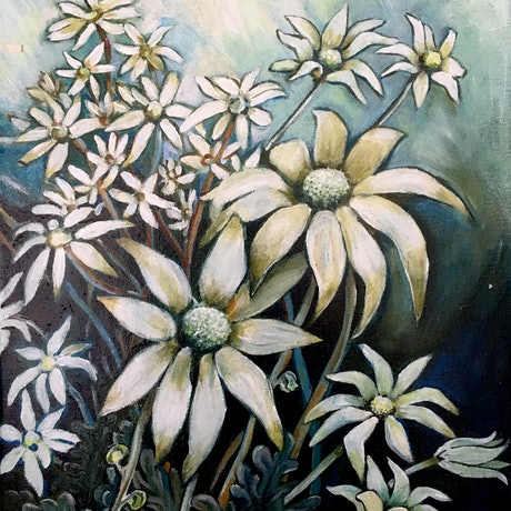 (CreativeWork) Field of Flannel Flowers by Natasha Ruffio. Acrylic Paint. Shop online at Bluethumb.
