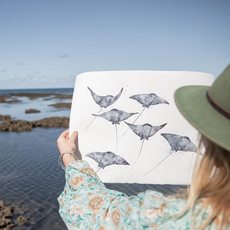 (CreativeWork) Eagle Rays for Days by Stephanie Elizabeth. Watercolour Paint. Shop online at Bluethumb.