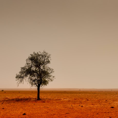 (CreativeWork) Red dust storm Ed. 1 of 5 by Wendy Philip. Photograph. Shop online at Bluethumb.
