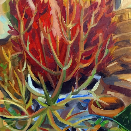 (CreativeWork) A plant in sunny today by Liza Merkalova. Oil Paint. Shop online at Bluethumb.