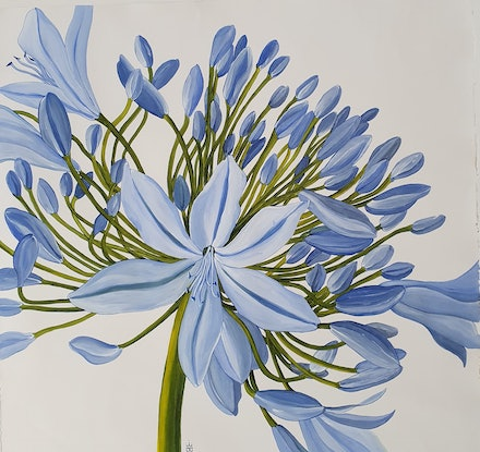 (CreativeWork) Agapanthus II by Jeanette Giroud. Acrylic Paint. Shop online at Bluethumb.