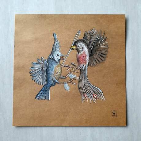 (CreativeWork) Bird Fight by Si Dowling. Drawings. Shop online at Bluethumb.