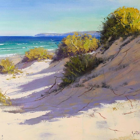 (CreativeWork) Light across the dunes, central coast beach by Graham Gercken. Oil Paint. Shop online at Bluethumb.