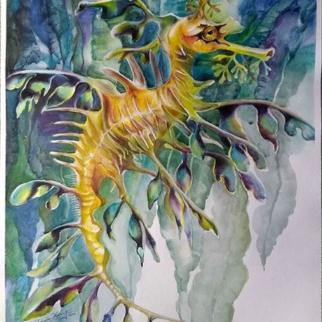 (CreativeWork) Leafy seadragon by Doudou Huang. Watercolour Paint. Shop online at Bluethumb.