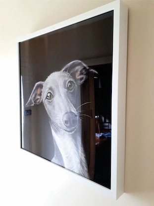 (CreativeWork) Curious by Dylan Shelmerdine. Drawings. Shop online at Bluethumb.