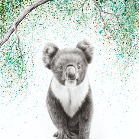 (CreativeWork) Koala Pride by Ashvin Harrison. Acrylic Paint. Shop online at Bluethumb.