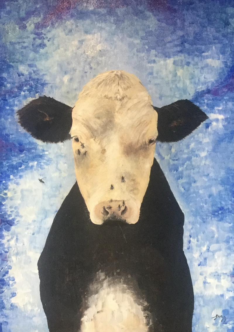 (CreativeWork) Cow with flies by Geoff Lugg. Acrylic Paint. Shop online at Bluethumb.